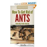 How To Get Rid Of Ants – Organic And Green Housecleaning Techniques For Inside And Out