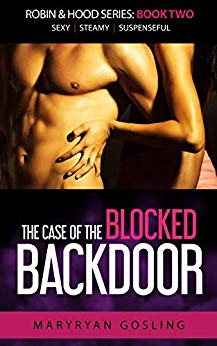 Case of the Blocked Backdoor (Robin & Hood Series)