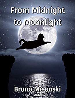 From Midnight to Moonlight