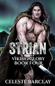 Viking Romance