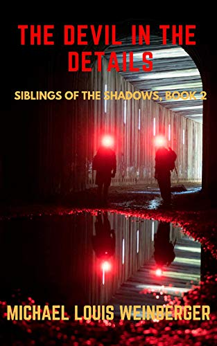 The Devil in the Details: Siblings of the Shadows, Book 2