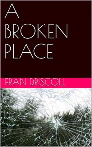 broken place novel