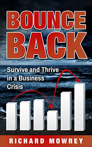 Bounce Back - Survive and Thrive in a Business Crisis