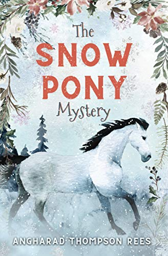 The Snow Pony Mystery